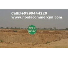 Industrial Plot for Sale Ecotech 11 Greater Noida, Industrial Plots Noida Resale - Image 2