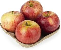 Shop Apple Fruit 4 Piece by Gala apple   Online shopping